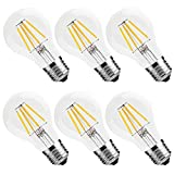 Vintage LED Filament Bulb 4W (40W Equivalent), Classic Edison A19/A60 LED Light Bulbs, E26 Medium Base Lamp, 2700K Warm White, 400 Lumens, Dimmable, Pack of 6