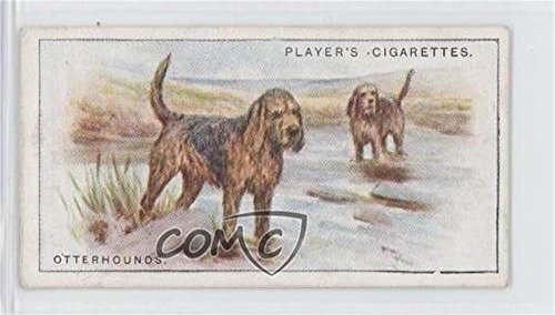 Otterhounds (Trading Card) 1925 Player's Dogs - Tobacco [Base] #20