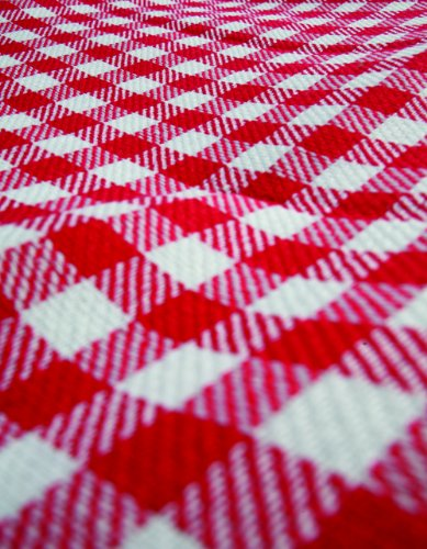 Camco Classic Red White Checkered Picnic Blanket With Waterproof Backing Includes Convenient Carry Strap Comfortable And Durable Material Measures