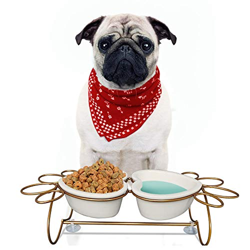 PETAFLOP Elevated Dog Bowls for Cat Dogs Feeder Pet Feeding Station Paw Print Shaped Steel Frame with Ceramic Bowls ()