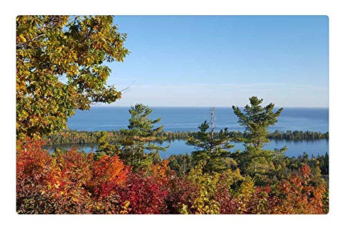 Tree26 Indoor Floor Rug/Mat (23.6 x 15.7 Inch) - Autumn Michigan Copper Harbor Fall Scenic 1