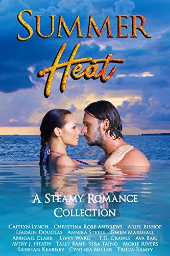 summer-heat-a-steamy-romance-collection-seasonal-shenanigans-book-3