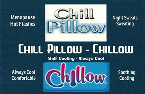 Chillow The Best Amazon Price In Savemoney