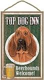(SJT27911) Bloodhound , Top Dog Inn 10
