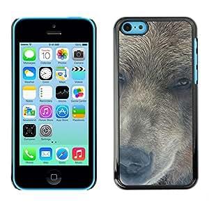 Caucho caso de Shell duro de la cubierta de accesorios de protección BY RAYDREAMMM - iPhone 5C - Retrato del oso