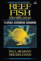 Reef Fish Identification (Reef Set)