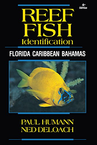 Reef Fish Identification - Florida Caribbean Bahamas - 4th Edition (Reef Set) (Best Diving In Belize)