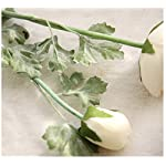 Mynse-5-Pieces-228-Inch-Single-Silk-Peony-Artificial-Ranunculus-Posy-Lu-Lotus-Flower-White