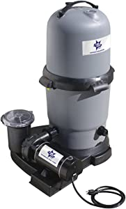 Waterway BS5205140-6S Blue Star Clearwater II Cartridge Filter System with 1.5 HP Pump, 100 Square Feet