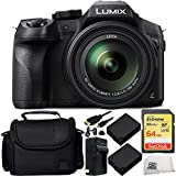 Panasonic Lumix DMC-FZ300 Digital Camera 9PC Accessory Kit. Includes SanDisk 64GB Extreme SDXC Memory Card (SDSDXN-064G-G46) + 2 Replacement Batteries + MORE - International Version (No Warranty)