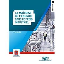 Maîtrise de l'énergie dans le froid industriel (La) (Clés pour agir)
