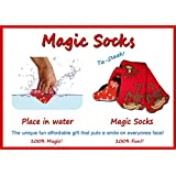 """Red Monkey """"Magic"""" Socks, Expands in Water"""