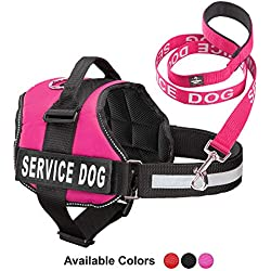 Service Dog Vest With Hook and Loop Straps & Matching Service Dog Leash Set - Harnesses From XXS to XXL - Service Dog Harness Features Reflective Patch and Comfortable Mesh Design (Pink, Med)