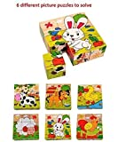Vibgyor Vibes 6 In 1 Wood Block Puzzles For Small Kids - Pet Animals/Domestic Animals Theme)