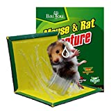 5pcs Thickened Large Mice Rats Insects Sticky Flat Glue Traps Butter Scented Sticky Boards,Kid Pet Safe, Easy to Use,Trap Rodents Cockroaches Bugs Ants Spiders