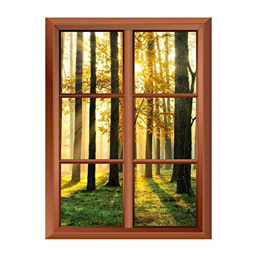 Removable Wall Sticker Wall Mural Beautiful Morning Scene in the Forest with Sun Rays and Long Shadows Creative Window View Vinyl Sticker