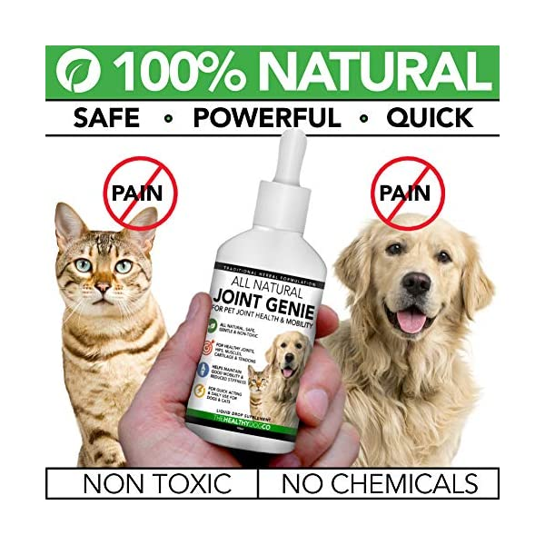 All Natural Joint Genie | High Strength Joint Care for Dogs and Cats | 100 Servings | Quick Acting Liquid Dog Joint Care Supplements for Stiffness, Support & Care for Young & Old Dogs