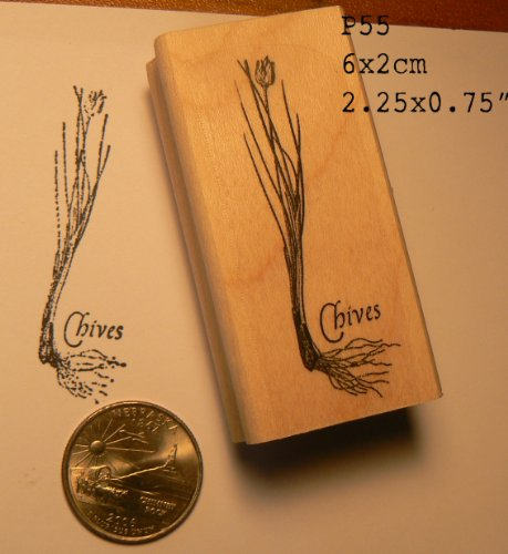 Chives herbs rubber stamp P55 (Stamp Basil)