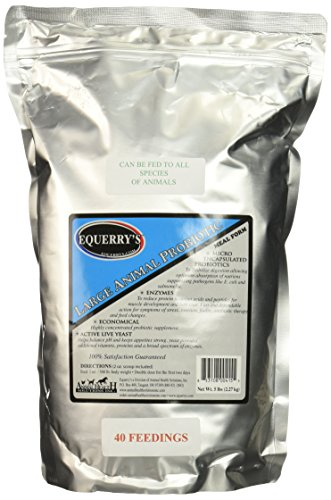 Cheapest Equerry's good sized Animal Probiotic 40 Feedings for 1000 lb. Horse, 5lb. Check this out.