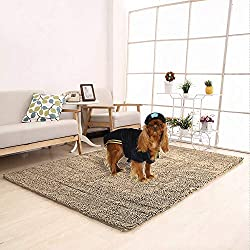"Meilocar Dog Mat Ultra Absorbent Soft Floor Mat, Pet Bed Mat/Rug for Dogs & Cats, Bathroom Non-Slip Doormat, Machine-Washable,19""x31"", 23""x34"",31""x59"",Camel"