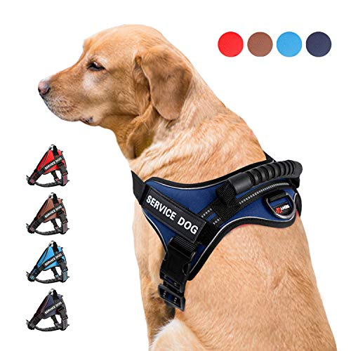 SENYEPETS Pet Harness No-Pull and Chock Free Dog Harness with Sturdy Easy Control Handle Reflective Vest Harness for Small Medium Large Dogs.(XS, Blue)