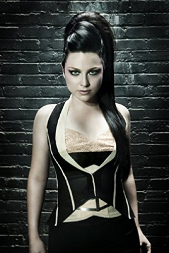 (Amy Lee & Evanescence Promos 18X24 Poster New! Rare! #BHG331940)