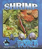 Shrimp, Deborah Coldiron, 1599288141