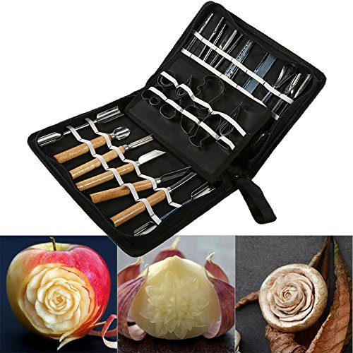Fruit Carving Set,Professional 46Pcs Set Portable Carving Tool Set Fruit Vegetable Food Garnishing/Cutting/Slicing/Peeling Garnish Tools Kit