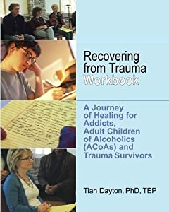 emotional sobriety workbook from relationship trauma to resilience and balance