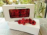NAVA CHIANGMAI Red Poppy Mulberry Paper Flower