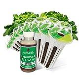 Miracle-Gro AeroGarden Heirloom Salad Greens Seed Pod Kit (9-Pod)