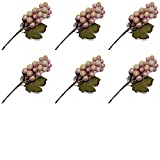Factory Direct Craft Group of Artificial Icy Grape Cluster Picks for Holiday and Everyday Arranging - 6 Picks