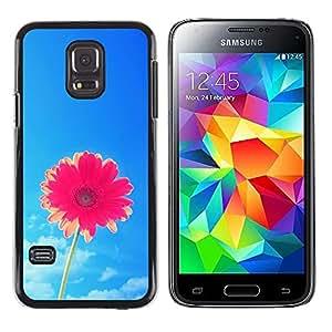 Été - Metal de aluminio y de plástico duro Caja del teléfono - Negro - Samsung Galaxy S5 Mini (Not S5), SM-G800
