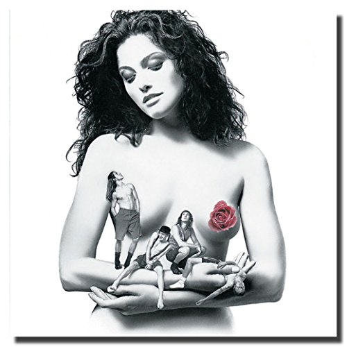Red Hot Chili Peppers Mothers Milk Flower Canvas Wall Art Be