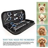 Petacc Pet Grooming Scissor Stainless Steel Dog