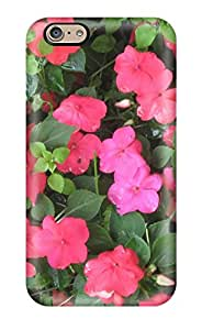 Elliot D. Stewart's Shop Iphone 6 Case Cover Summer Flowers Case - Eco-friendly Packaging 3514759K89448286