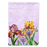 Caroline's Treasures BB7445CHF Purple and Yellow Iris Flag Canvas House Size, Large, Multicolor Review