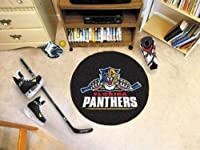 Fanmats NHL Florida Panthers Nylon Rug