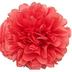 "SUNBEAUTY 10""/25cm 5pcs Coral Tissue Paper Pom Poms Flower Balls Hanging Decoration Party Birthday Wedding (25cm/10"", Coral)"