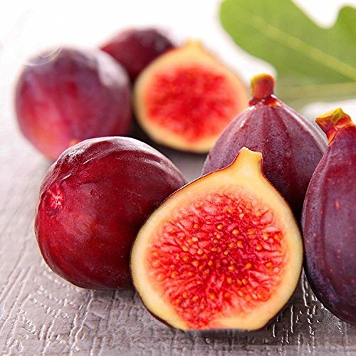 2018 Hot Sale Davitu Rose Red Fig Ficus Carica Tree Fruits Seeds, 5 Seeds, Professional Pack, red Skin Rose red Inside Sweet Organic Fruits