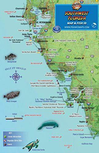 Southwest Florida Map - Southwest Florida Dive Map & Coral Reef Creatures Guide Franko Maps Laminated Fish Card