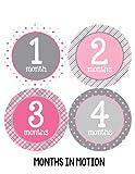 Months in Motion 295 Monthly Baby Stickers Milestone Age Sticker Photo Prop Newborn Girl Pink