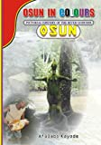 Osun in Colours: Pictorial History of the River Goddess,Osun