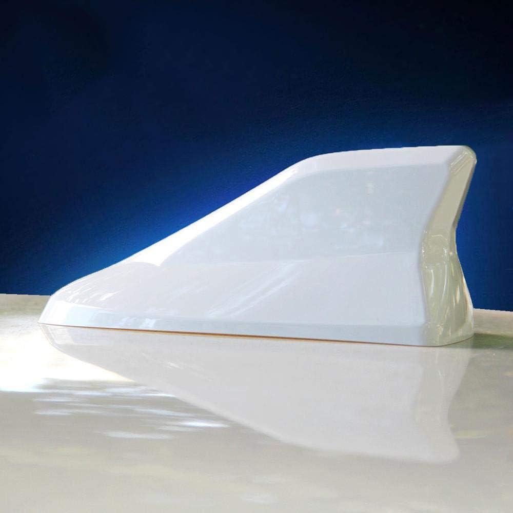SBCX Antena de tiburón para Ford Focus, Accesorios para ...