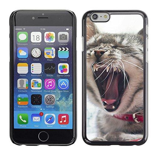 "Premio Sottile Slim Cassa Custodia Case Cover Shell // V00003829 sleepy cat 6 // Apple iPhone 6 6S 6G PLUS 5.5"""