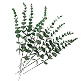 HATOKU 10pcs Artificial Eucalyptus Leaves Stem Real