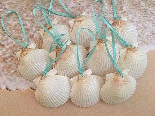 Ribbon Shell (White Glitter Seashell Christmas Ornaments with Turquoise Ribbon, 10)
