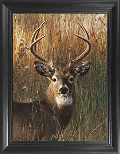 Deer Portrait Framed 3D Lenticular Picture - Unbelievable Life Like 3D Art Pictures, Lenticular Posters, Cool Art Deco, Unique Wall Art Decor, With Dozens to Choose From! (Elk Portrait)