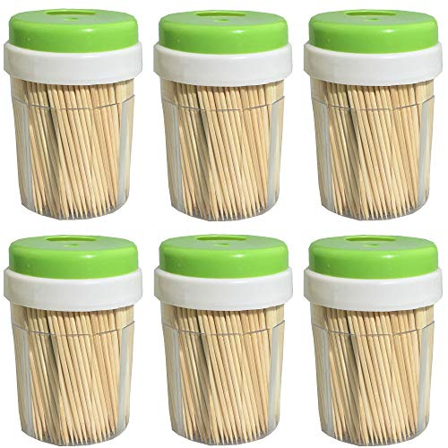 Star Holder Toothpick (Round Wooden Toothpick 3000 Count - Double Sided Natural Splinter-Free Bamboo Wood - 6 Dispensers with 500 Pieces Per Holder)