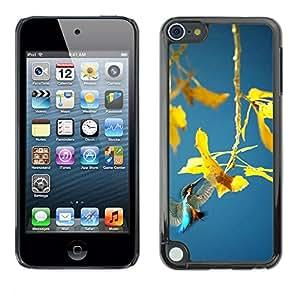 "For Apple iPod Touch 5 , S-type Planta de la primavera"" - Arte & diseño plástico duro Fundas Cover Cubre Hard Case Cover"